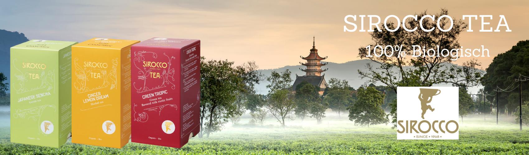 Sirocco Tee Herbst 2020